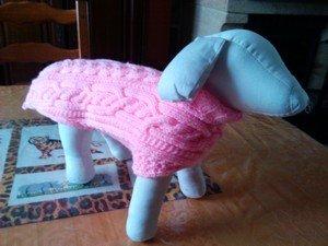 modele de manteau pour chien a tricoter